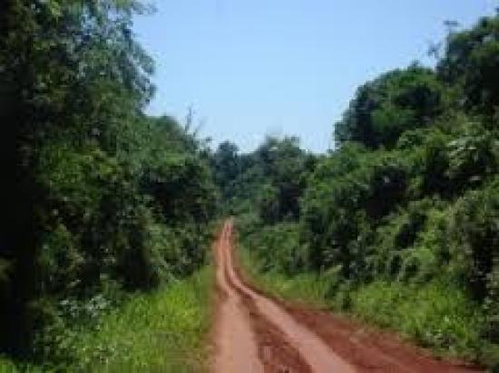 ruta, tierra roja, misiones